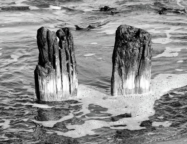 Photograph - Wooden Twins Of The Sea Bw by Robert Sidebottom