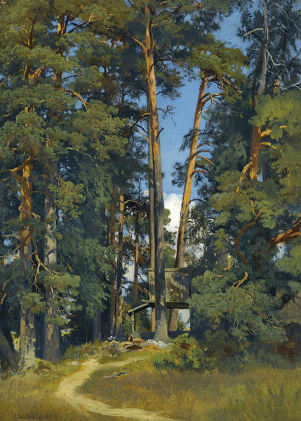 Painting - Woodland Grove by Ivan Shishkin