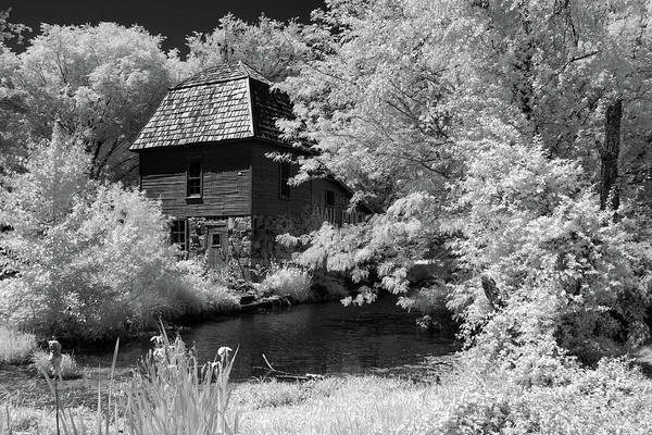 Cabin In The Woods Wall Art - Photograph - Woodland Home by James Barber