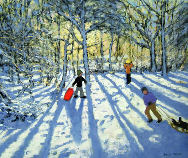 Fresh Painting - Woodland In Winter by Andrew Macara