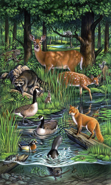 Tail Wall Art - Painting - Woodland by Jerry LoFaro