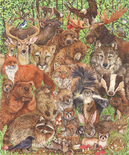 Groundhog Painting - Woodland Mammals by Wendy Edelson