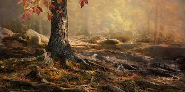 Photograph - Woodland Mist by Robin-Lee Vieira