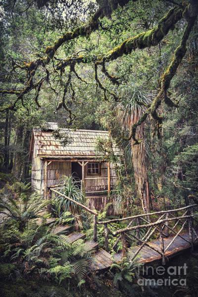 Hut Wall Art - Photograph - Woodland Mysteries by Evelina Kremsdorf