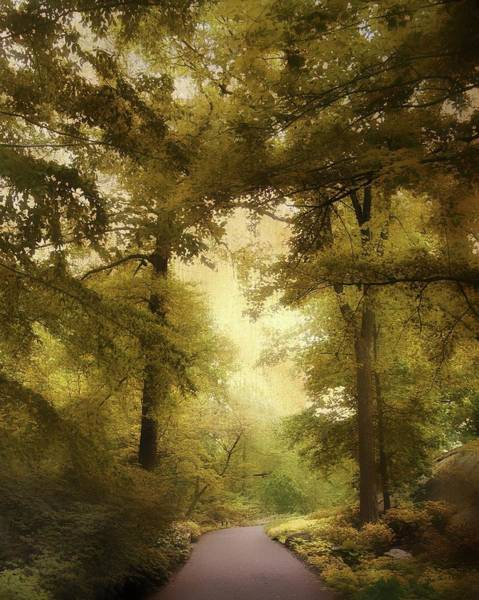 Golden Gardens Photograph - Woodland Passage by Jessica Jenney