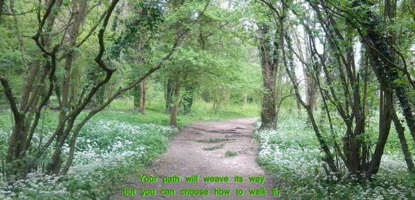 Photograph - Woodland Path Photo With Quote by Julia Woodman