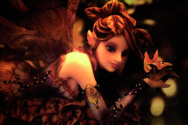 Photograph - Woodland Pixie by Scott Hovind