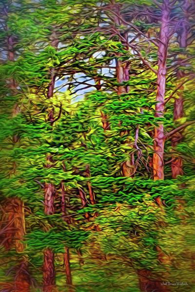 Digital Art - Woodland Reveries by Joel Bruce Wallach