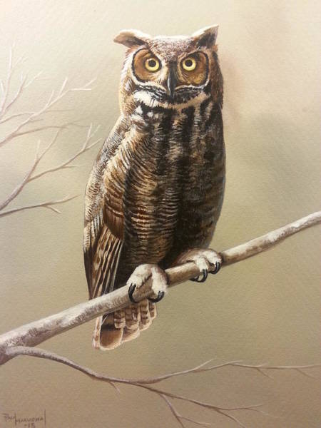Wall Art - Painting - Woodland Stare by Paul Makuchal