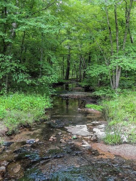 Photograph - Woodland Stream by NaturesPix