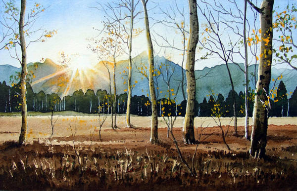 Wall Art - Painting - Woodland Sunset by Paul Dene Marlor