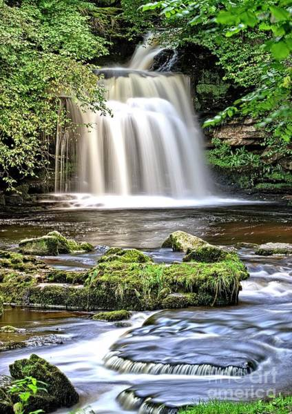 Photograph - Woodland Waterfall by Martyn Arnold