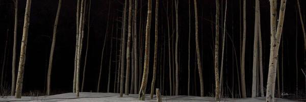 Photograph - Woodlands Reach by Ed Boudreau