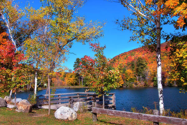 Photograph - Woodward Reservoir - Plymouth, Vt by Joann Vitali