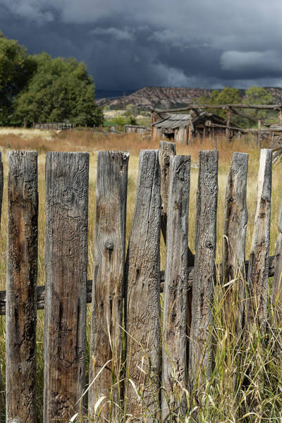 Wall Art - Photograph - Woodworm Art Picket Fence by Kathleen Bishop