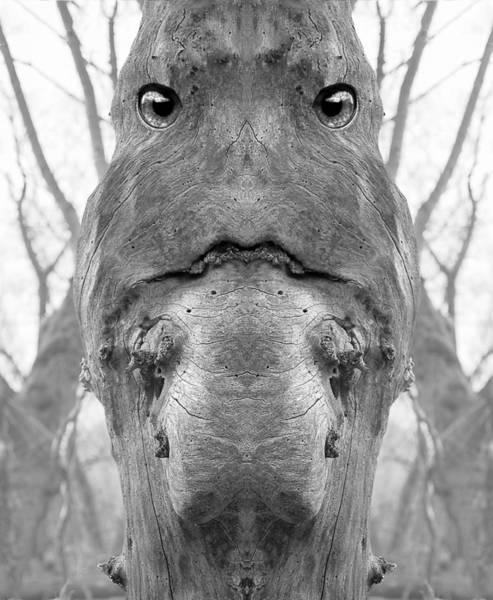 Digital Art - Woody 108bw by Rick Mosher