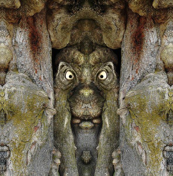 Digital Art - Woody 112 by Rick Mosher