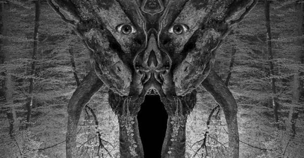 Digital Art - Woody 113bw by Rick Mosher