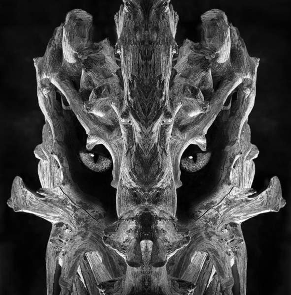 Digital Art - Woody 124bw by Rick Mosher