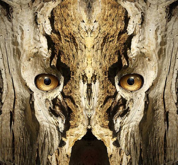 Wall Art - Digital Art - Woody 139 by Rick Mosher