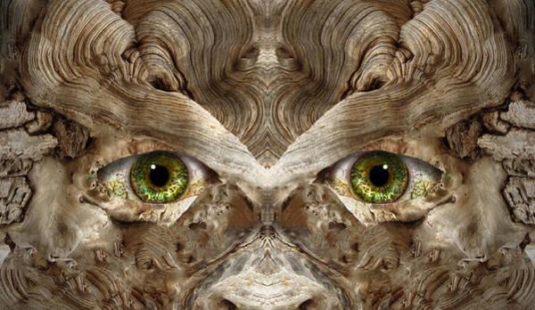 Wall Art - Digital Art - Woody 148 by Rick Mosher