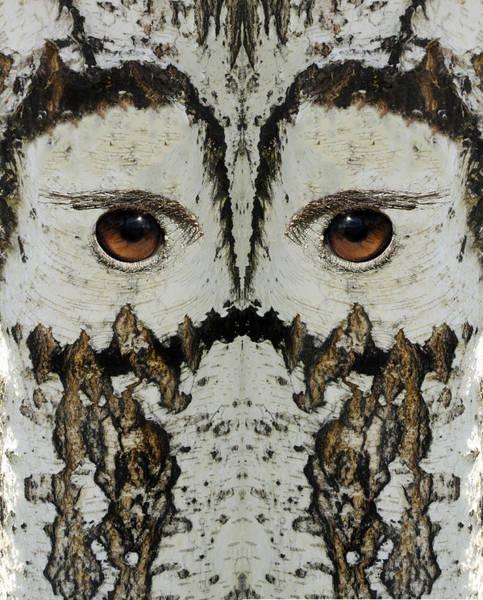 Wall Art - Digital Art - Woody 154 by Rick Mosher