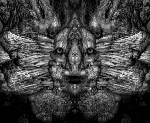 Digital Art - Woody 157bw by Rick Mosher