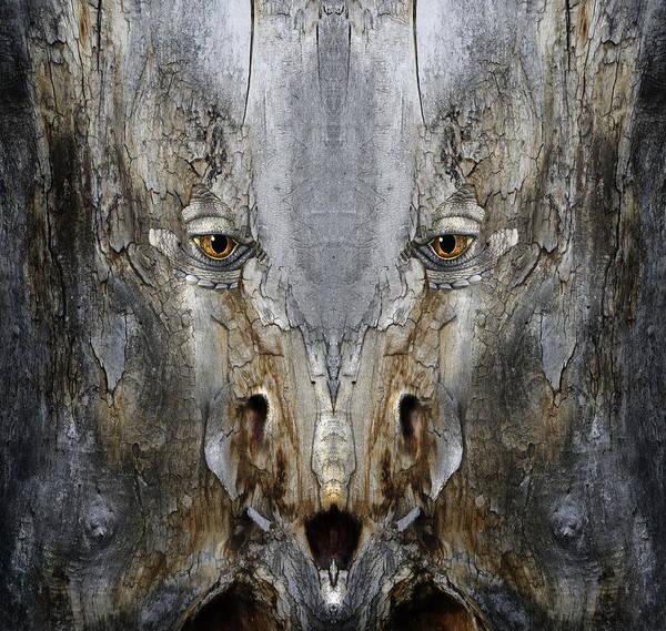 Digital Art - Woody 169 by Rick Mosher