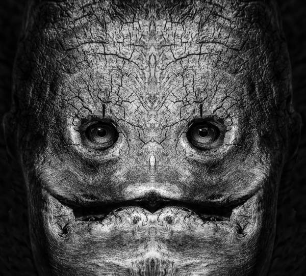 Digital Art - Woody 172 Bw by Rick Mosher