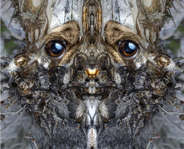 Digital Art - Woody 181 by Rick Mosher