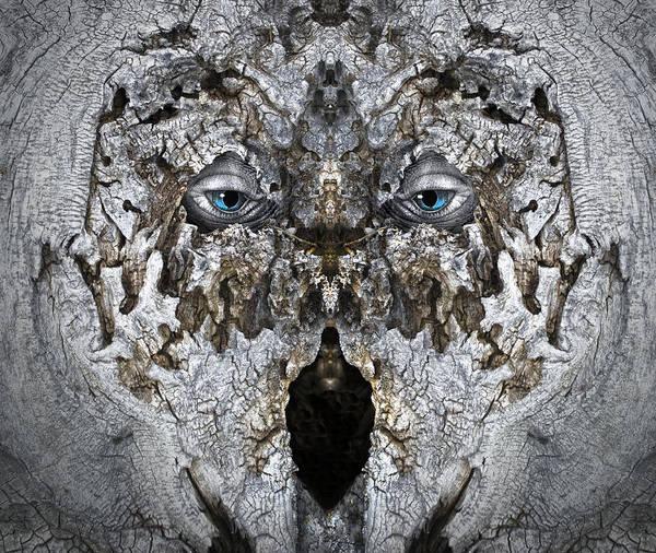 Digital Art - Woody 183 by Rick Mosher