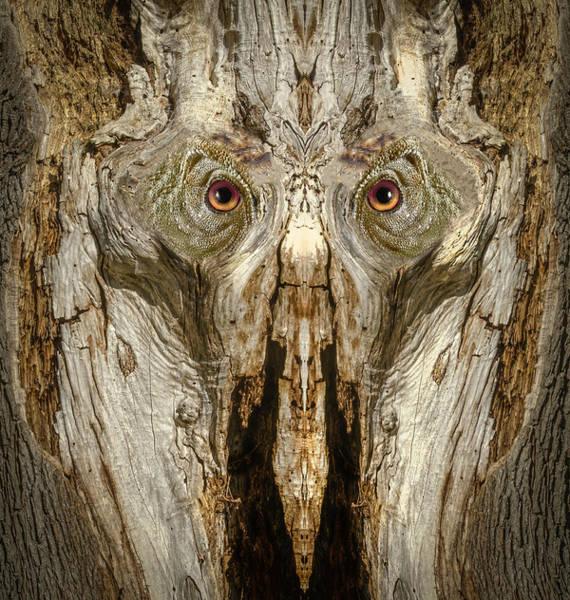 Digital Art - Woody 191 by Rick Mosher