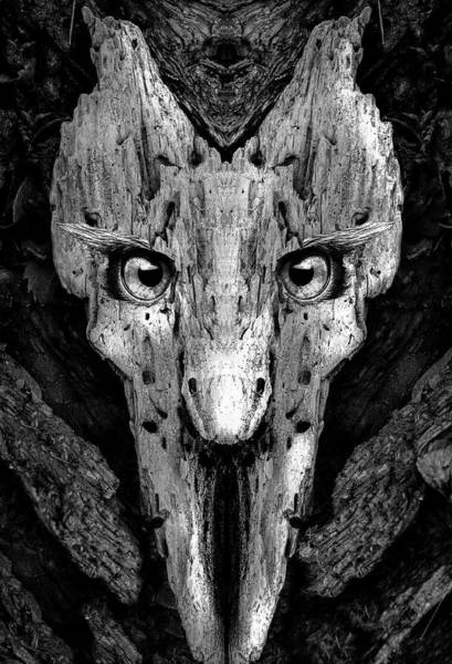 Digital Art - Woody 197 Bw by Rick Mosher