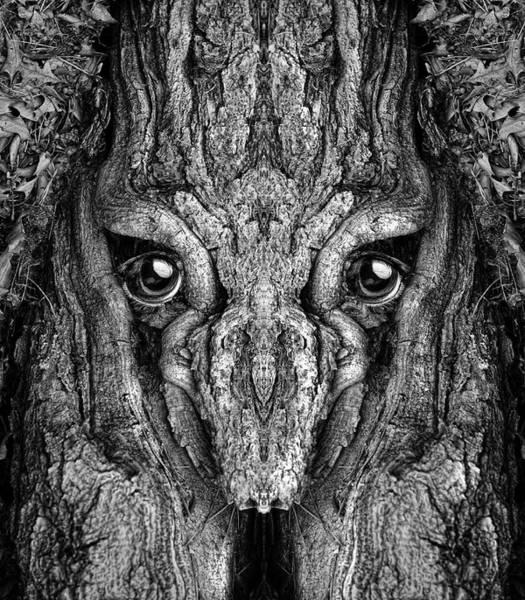 Digital Art - Woody 199bw by Rick Mosher