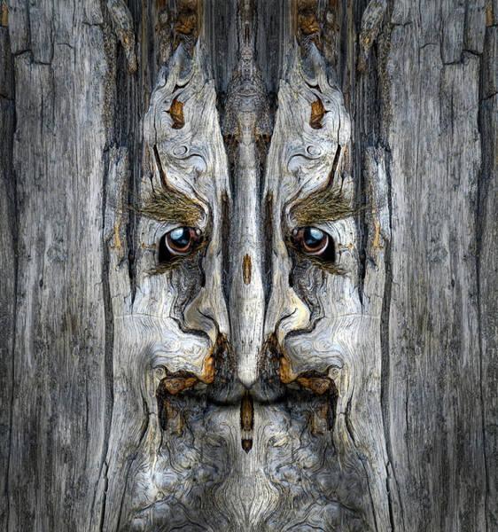 Digital Art - Woody 203 by Rick Mosher