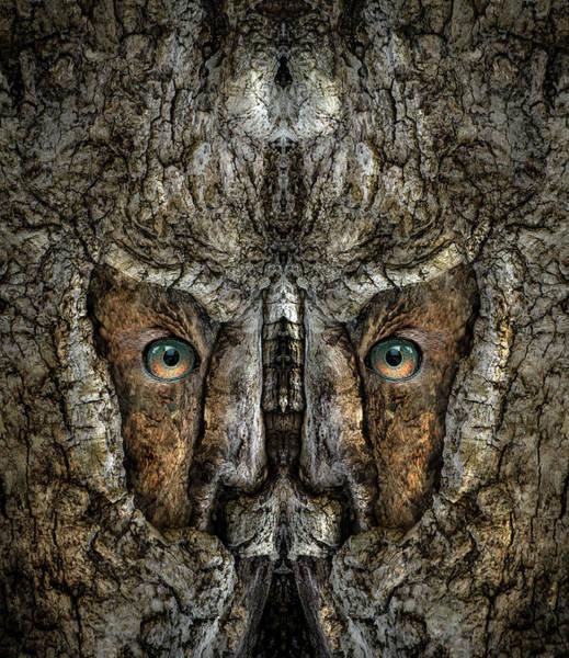 Digital Art - Woody 212 by Rick Mosher
