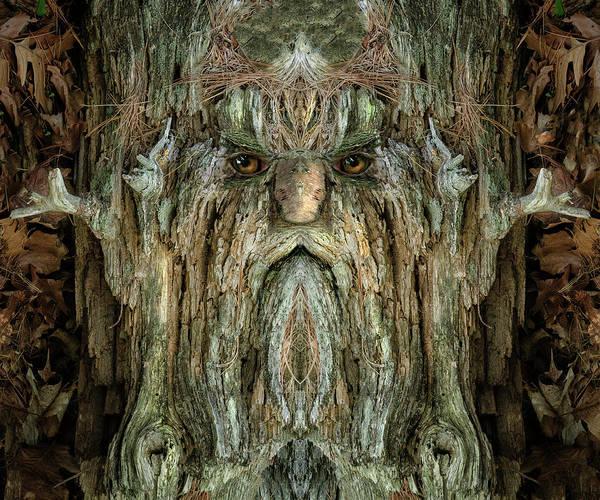 Digital Art - Woody 214 by Rick Mosher