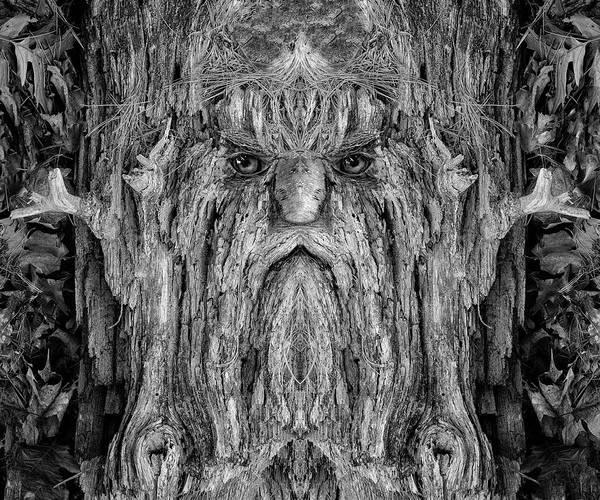 Digital Art - Woody 214bw by Rick Mosher