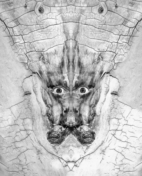 Digital Art - Woody 216 Bw by Rick Mosher