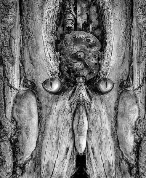 Digital Art - Woody 217 Bw by Rick Mosher