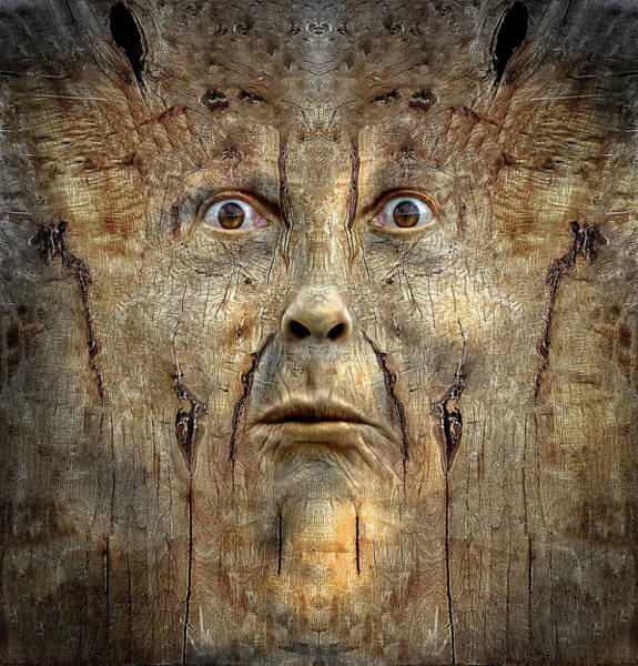 Wall Art - Digital Art - Woody 219 by Rick Mosher