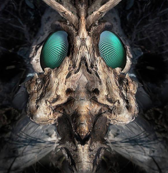 Digital Art - Woody 225 by Rick Mosher