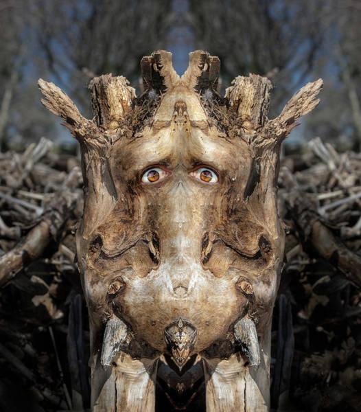 Digital Art - Woody 229 by Rick Mosher