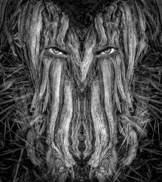 Digital Art - Woody 230bw by Rick Mosher