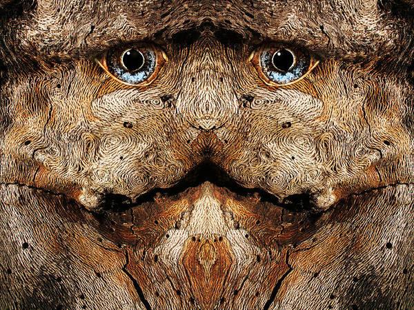 Digital Art - Woody 79 by Rick Mosher