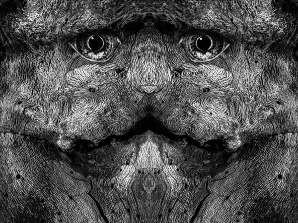 Digital Art - Woody 79bw by Rick Mosher