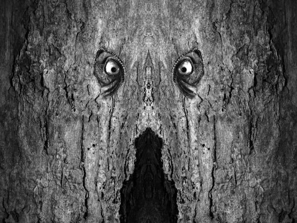 Digital Art - Woody 84bw by Rick Mosher