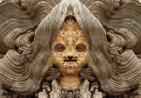 Digital Art - Woody 85 by Rick Mosher