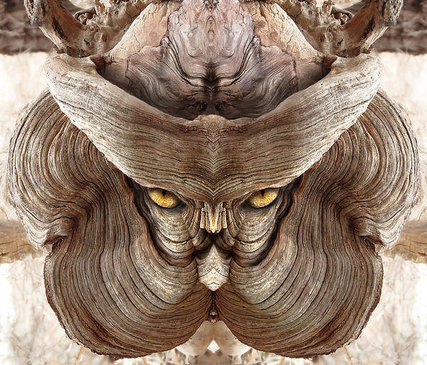 Digital Art - Woody 88 by Rick Mosher