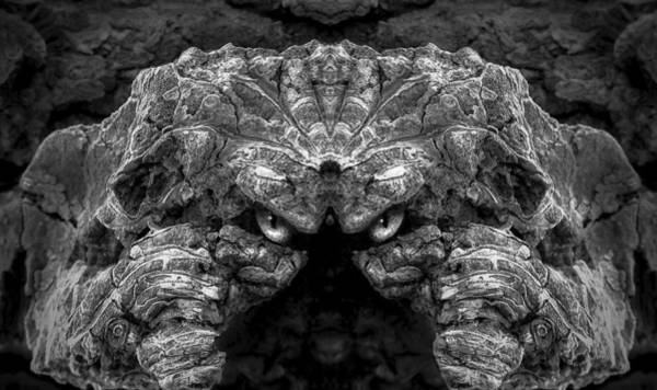 Digital Art - Woody 95bw by Rick Mosher